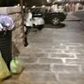 Cartolina da Giovinazzo: rifiuti ed auto in sosta vietata a Ponente