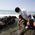 Alga tossica nelle acque di Giovinazzo