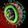 Le ultime novità su vaccini e terapie anti-Covid, tra buone e cattive notizie