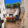 """""""Giovinazzo Borgo in Fiore 2019 """": come far bello il centro storico con poco"""