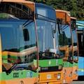 Scuola e trasporto pubblico locale, la Regione fa il punto