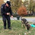 I Carabinieri e i cani antidroga passano al setaccio la città