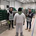 La piaga del lavoro nero affligge la Puglia, piano straordinario della Finanza
