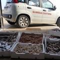 Pesce venduto abusivamente: sequestrati 40 chili
