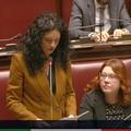 Pannolini monouso potenzialmente pericolosi: Galizia interroga il Ministro (VIDEO)