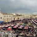 Giro d'Italia, c'è la conferma: il 17 maggio c'è la tappa Giovinazzo-Vieste