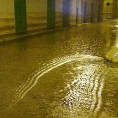 Piogge consistenti su Giovinazzo