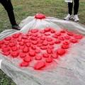Sassi rossi Fidapa contro la violenza sulle donne