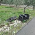 Un vizio antico: rifiuti e pneumatici lungo la provinciale per Terlizzi