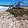 Rifiuti in spiaggia, ripulito il litorale sud a tempo di record