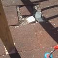 Danneggiata la pavimentazione in Villa Comunale nei pressi dei giochi per bimbi