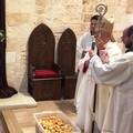 Sant'Antonio di Padova: ieri la benedizione del pane e dei bambini