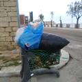Cartolina da Giovinazzo: un carrello della spesa pieno di rifiuti a Levante