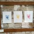 Borgo in Fiore, Emanuela Casagrande in mostra al San Martin fino al 29 giugno