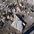 In Contrada San Matteo litorale sempre sporco. La denuncia di un lettore