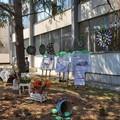 """I.C. """"Bavaro-Marconi """" di Giovinazzo: chiusura con la Giornata dedicata alle tematiche ambientali"""
