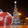 L'8 dicembre accensione dell'albero in piazza e concerto di Sagi Rei