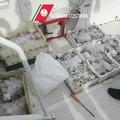 """Operazione  """"Capojale """": sequestri e denunce della Guardia Costiera"""