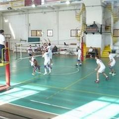 Volley è Vita senza problemi, 3-0 al Locorotondo