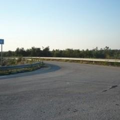 «Stop a camion e tir in località Macchia Cicoria»