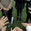 Eugema Onlus inaugura un percorso sensoriale per bambini