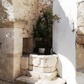 Giornate FAI d'Autunno, oggi a Giovinazzo è aperto Palazzo Saraceno