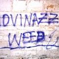 """""""Giovinazzo weed """": su Instagram le premesse alle scritte sui muri nel borgo antico?"""