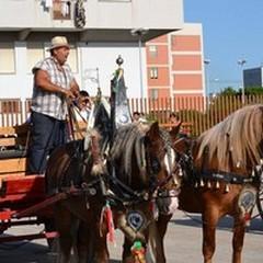 """Questo pomeriggio la  """"Sfilata di cavalli, traini e carrozze """""""