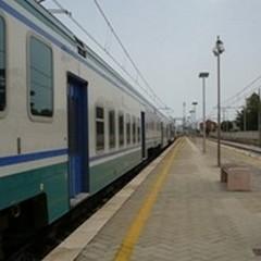 Investimento mortale a Bisceglie, traffico sospeso sulla Bari-Foggia