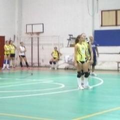 La Volley Ball espugna Bitonto al tie-break