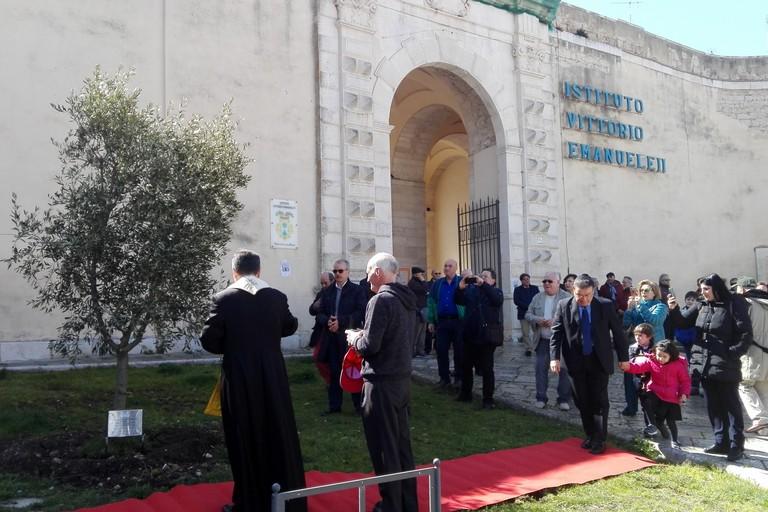 Benedizione degli ulivi IVE. <span>Foto Giuseppe Dalbis</span>