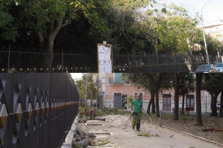 Il taglio del verde in Villa nel 2010