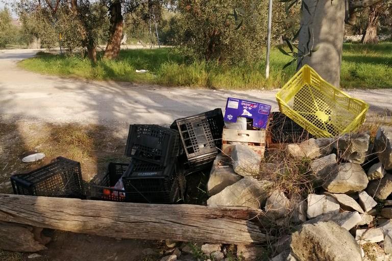 Cassette della frutta abbandonate