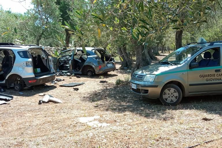 Le due scocche d'auto recuperate dalle Guardie Campestri
