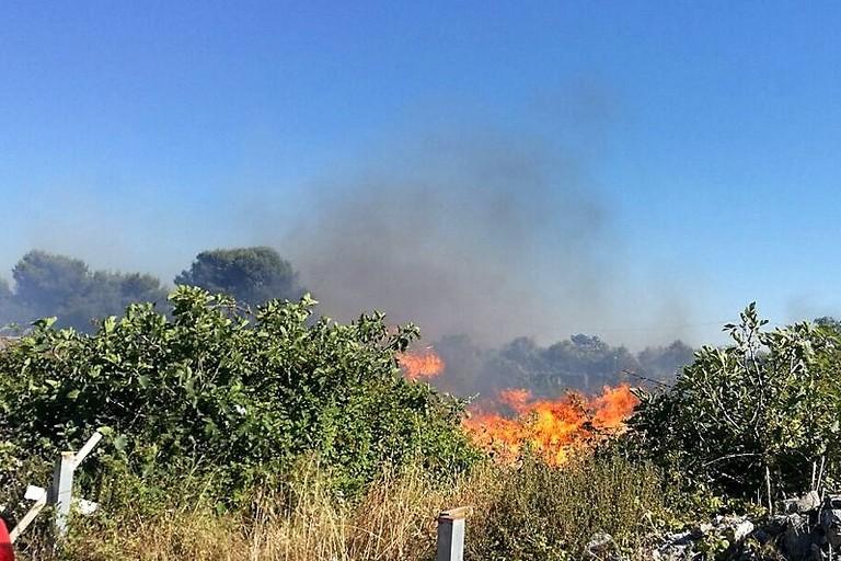 Incendio sulla Molfetta-Giovinazzo