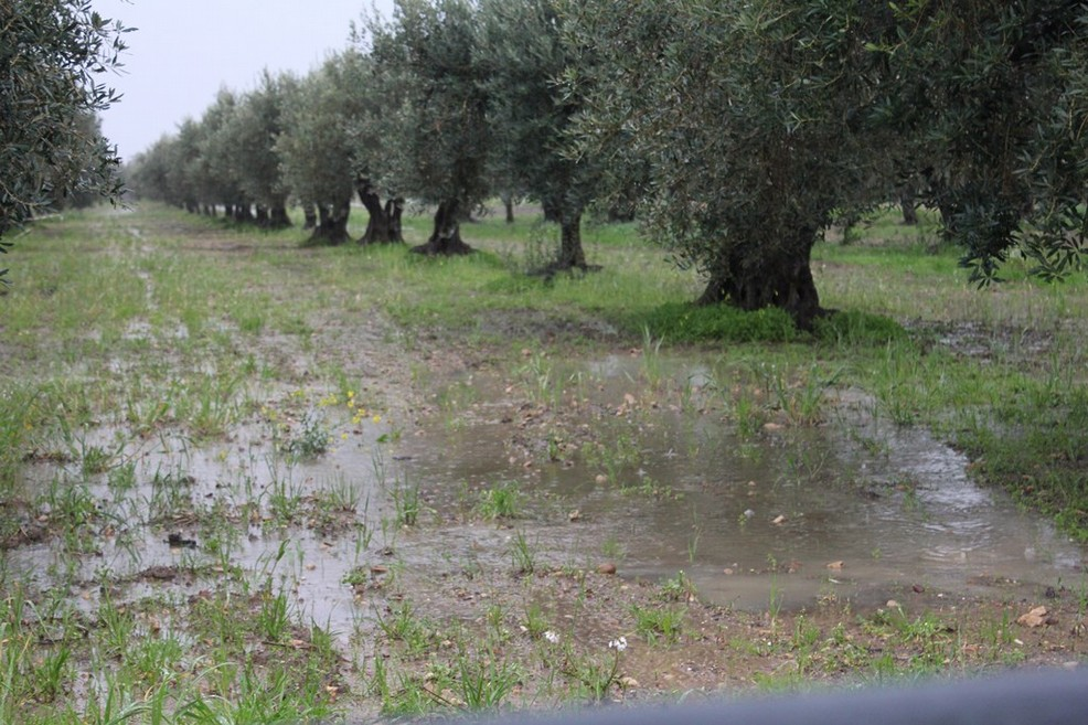 Maltempo in Puglia