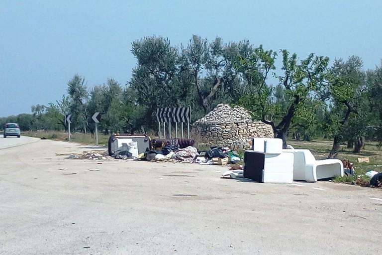 I rifiuti ingombranti abbandonati sulla provinciale. <span>Foto G.L. </span>